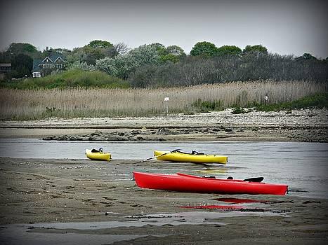 3 Kayaks by Diane Valliere