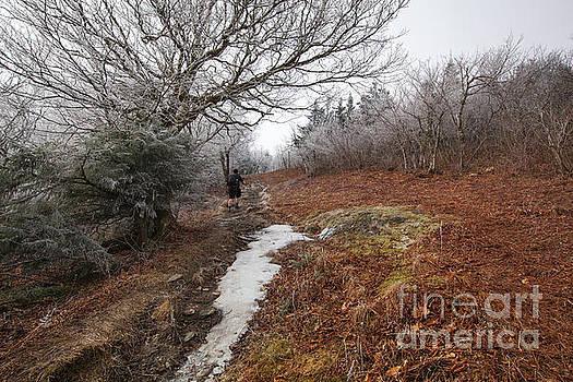 Mount Greylock by Jonathan Welch