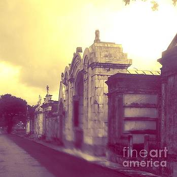 New Orleans Cemetery by Janice Spivey