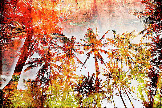 Palm Trees by Skip Nall