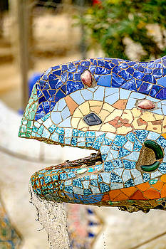 Park Guell by David Ridley