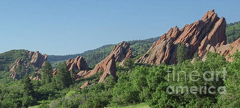 Rocky Colorado by Deniece Platt