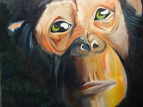 Soul of a monkey by Jeff Hunter