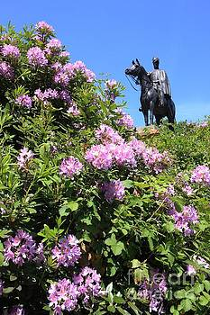 Statue of 1st Duke of Wellington at Round Hill Aldershot by Paul Felix