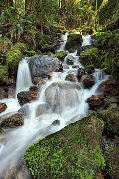 Waterfall by Bob Stevens