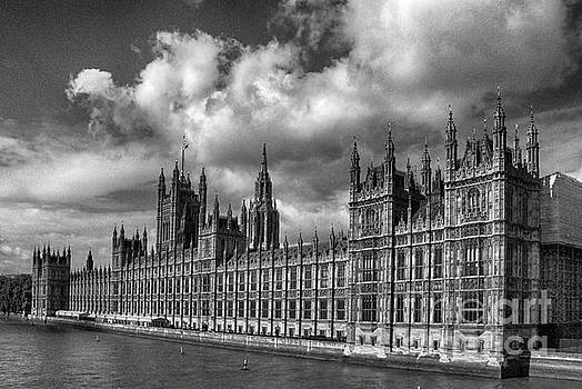 Westminster Palace by Pravine Chester