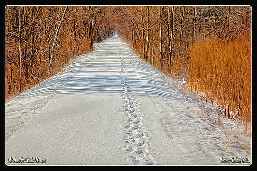 LeeAnn McLaneGoetz McLaneGoetzStudioLLCcom - Winter on Macomb Orchard Trail