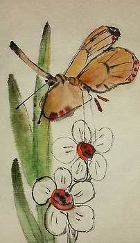 Bugs and blooms album by Debbi Chan
