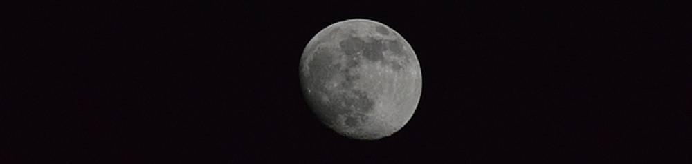 Moon by Dacia Doroff