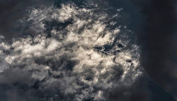 Steven Poulton - Sky Life