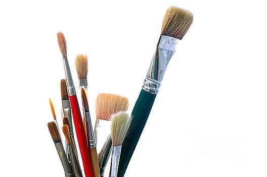 Watercolor Brushes by Dariusz Gudowicz