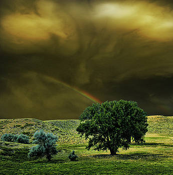 4329 by Peter Holme III