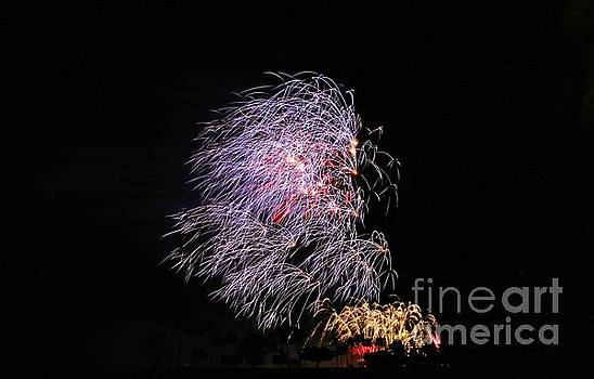 4th of July - Bamboo Fireworks by Craig Wood