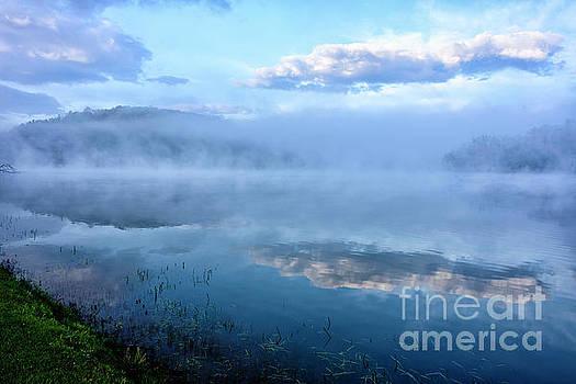 Misty Spring Morning  by Thomas R Fletcher