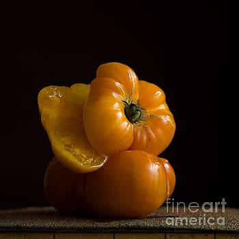 BERNARD JAUBERT - Tomatoes.