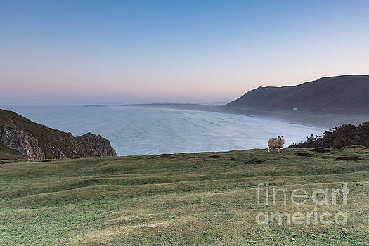 Worms Head by Keith Thorburn LRPS
