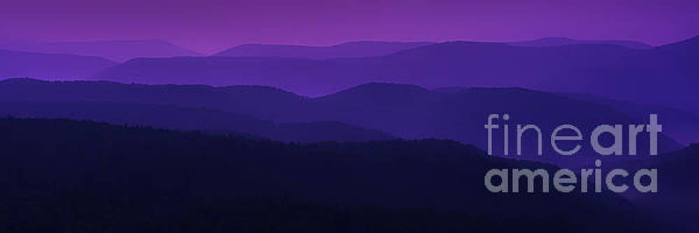 Allegheny Mountain Dawn by Thomas R Fletcher