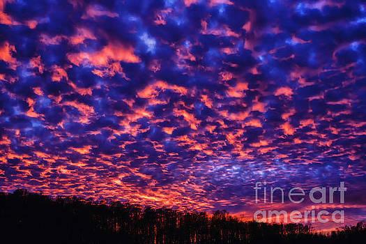 Appalachian Sunset Afterglow by Thomas R Fletcher