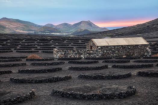 La Geria - Lanzarote by Joana Kruse