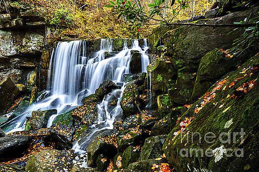 Wolf Creek Falls by Thomas R Fletcher