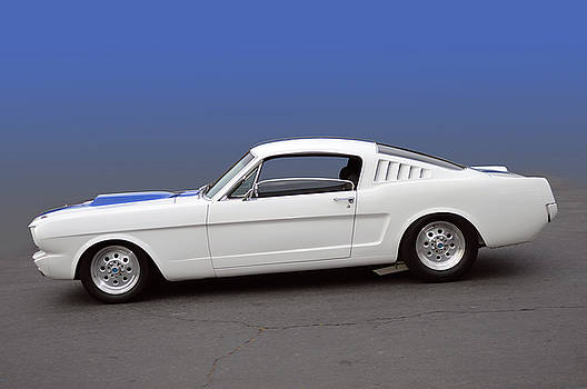 64 Mustang Fastback by Bill Dutting