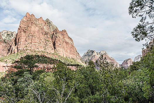 Zion National Park by Ross Jamison