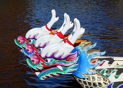 Traditional Dragon Boats in Taiwan by Yali Shi