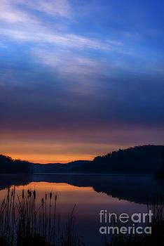 Winter Dawn by Thomas R Fletcher