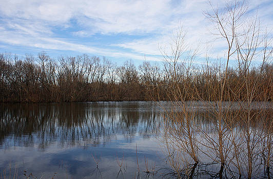 James A Reed Wildlife Area by Ellen Tully