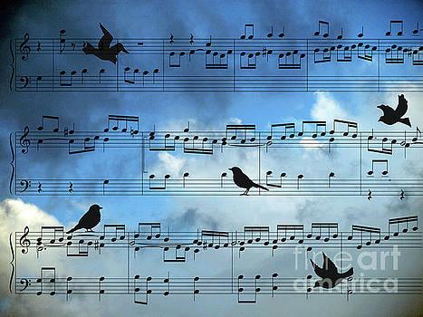 A bird Song by Jacklyn Duryea Fraizer