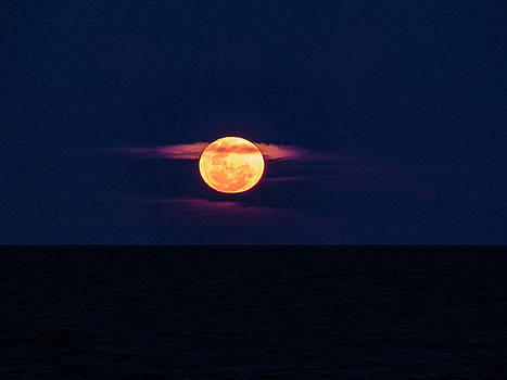 A Bloody Moon by Steve Taylor