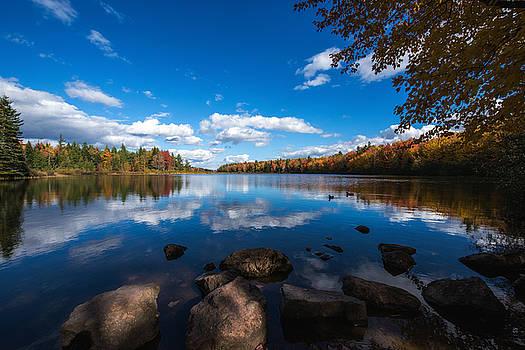 A Blue Autumn by Alex Land