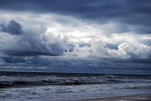 A Break in the Storm by Linda Mesibov