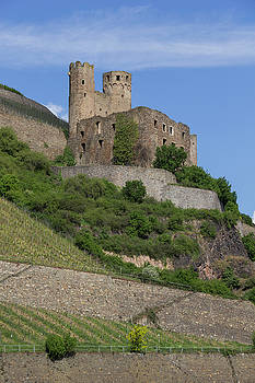A Castle Among the Vineyards by Teresa Mucha
