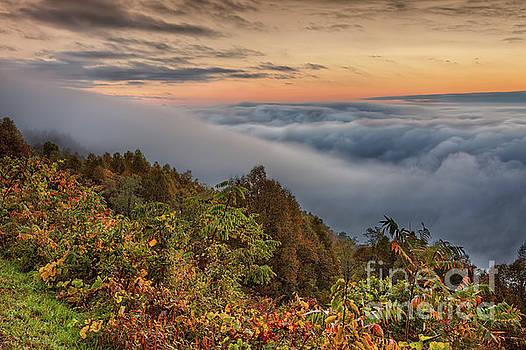 Dan Carmichael - A Cloudy August Morning