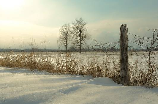 A Dawn of New Snow by Karl Anderson