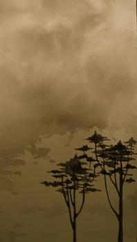 A Day in Bodega by Jeff DOttavio