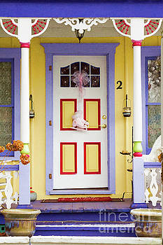 A Door is a Story by Marilyn Cornwell
