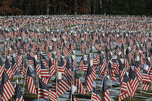 A Field of Flags by Don Pettengill