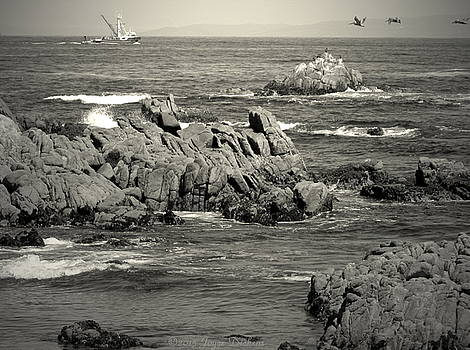 Joyce Dickens - A Good Day Fishing On Monterey Bay In Black And White