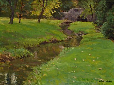 A Grassy Brook by Scott Harding