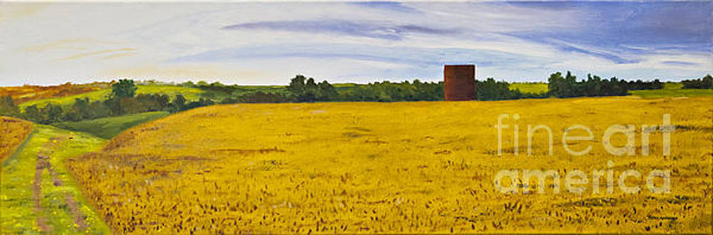 Kansas Morning by Terry Anderson