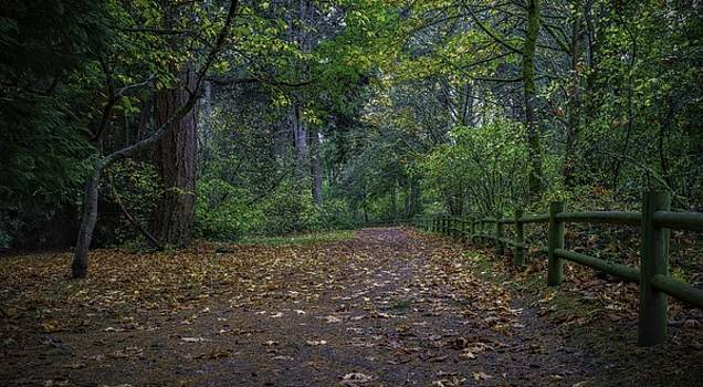A Lincoln Park Autumn by Ken Stanback
