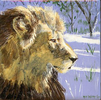 A Lion in Winter by Dy Witt