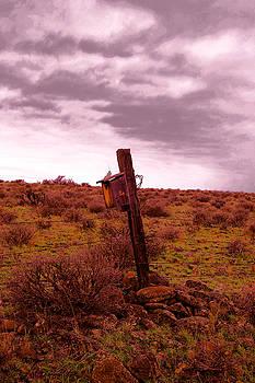 A lone birdhouse  by Jeff Swan