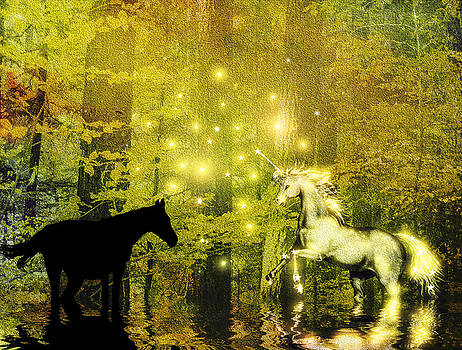 A Magic Encounter In The Enchanted Forest by Diane Schuster