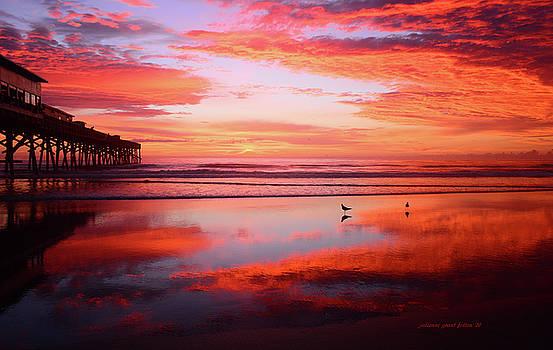 A Magnificent dawn 8-14-16 by Julianne Felton
