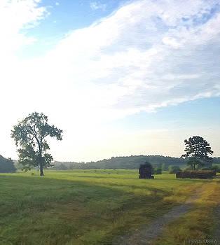 A Morning Walk by J Morgan Massey