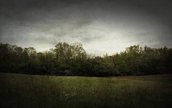 A Pasture Landscape by Cynthia Lassiter