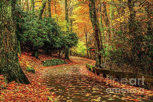 A Path through Autumn by Darren Fisher